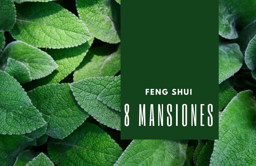 Introduccion al Ba Zhai 八宅 8 Mansiones 東西四命