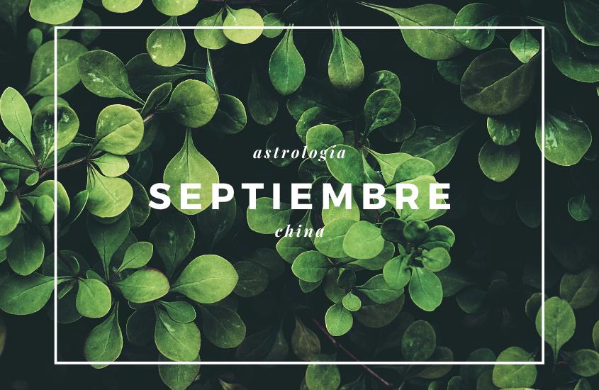 Astrología China y Estrellas Voladoras, Septiembre 2020