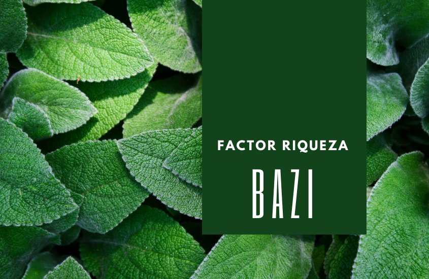 BaZi: El Factor Riqueza
