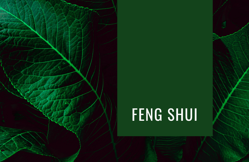 Feng Shui: Construcción del Mapa