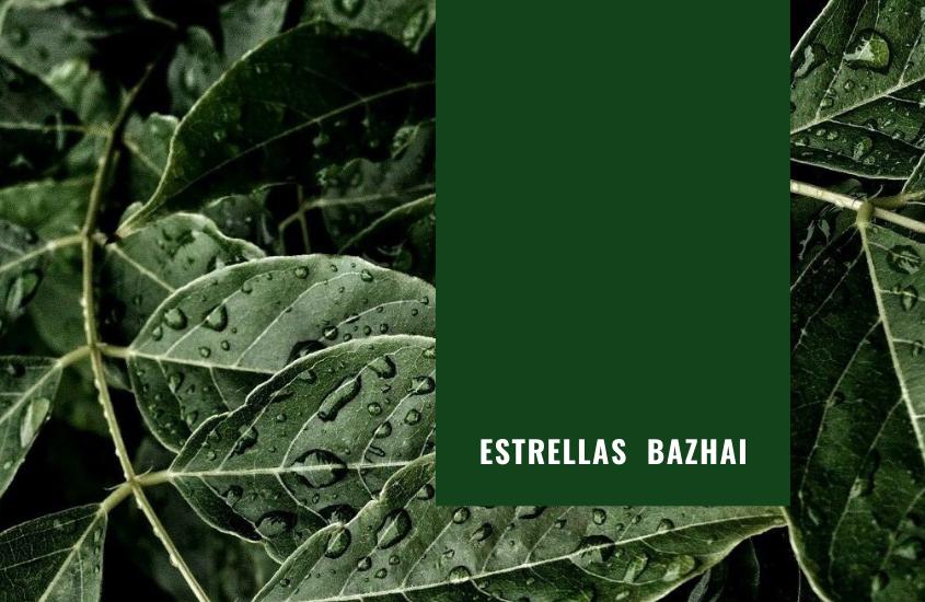 Significado de las Estrellas Ba Zhai