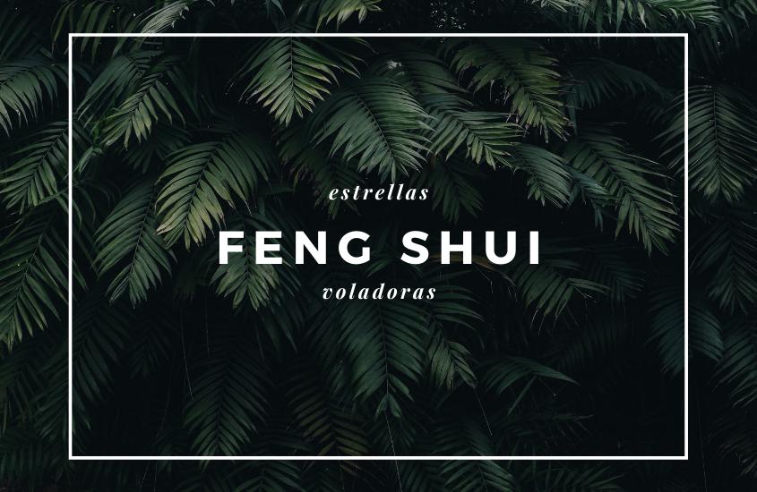 Feng Shui 2013 Pronóstico y Análisis