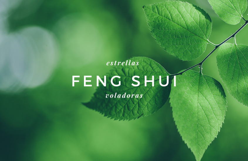 Feng Shui Abril 2014