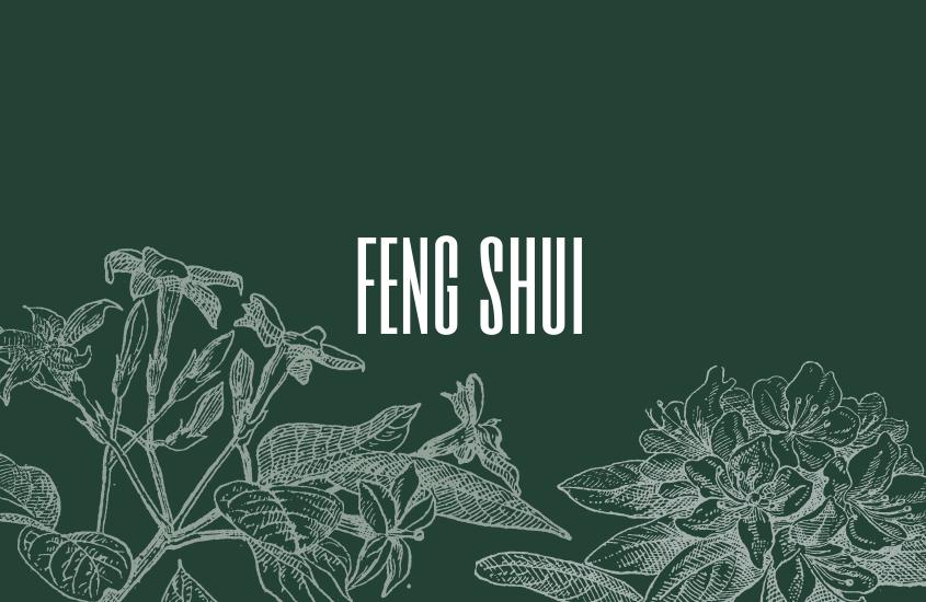 Recomendaciones: Feng Shui 2018