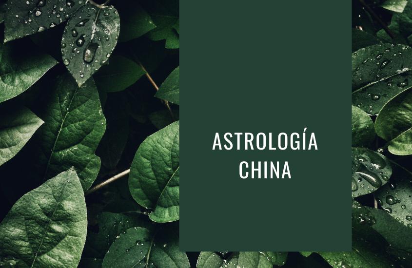 Libros Astrología China ¿qué tan exactas son sus predicciones?