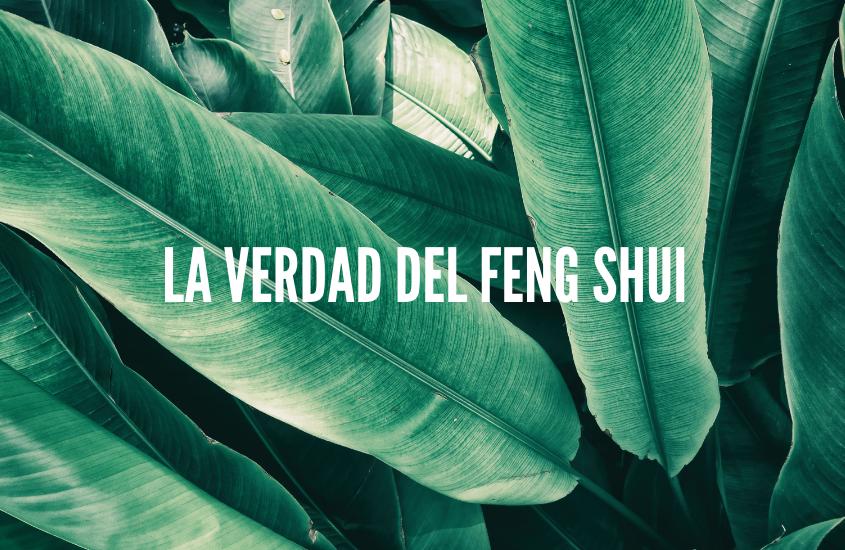 La Verdad Acerca del Feng Shui