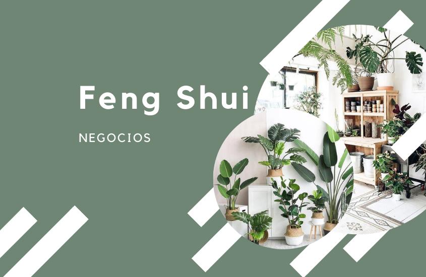 Feng Shui Negocios: La Correcta Distribución Interior