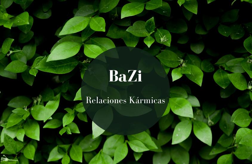 BaZi: Relaciones Kármicas
