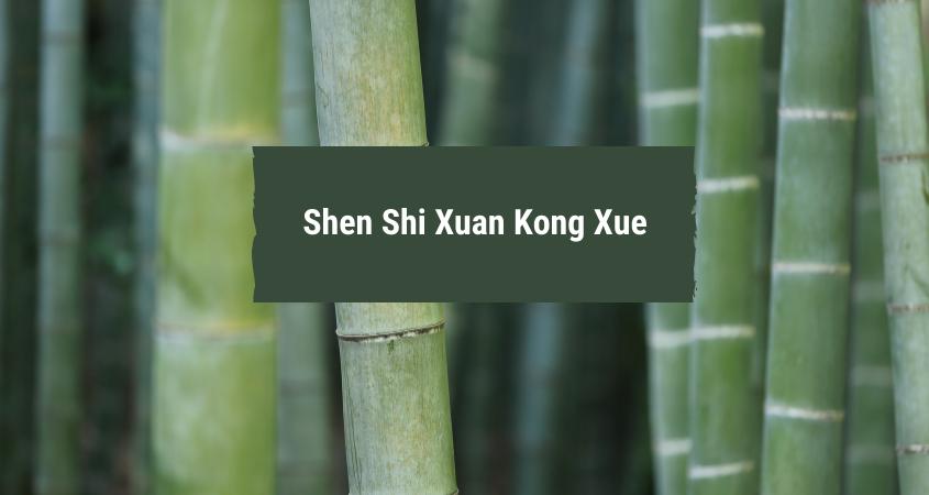 2. Feng Shui: Shen Shi Xuan Kong Xue