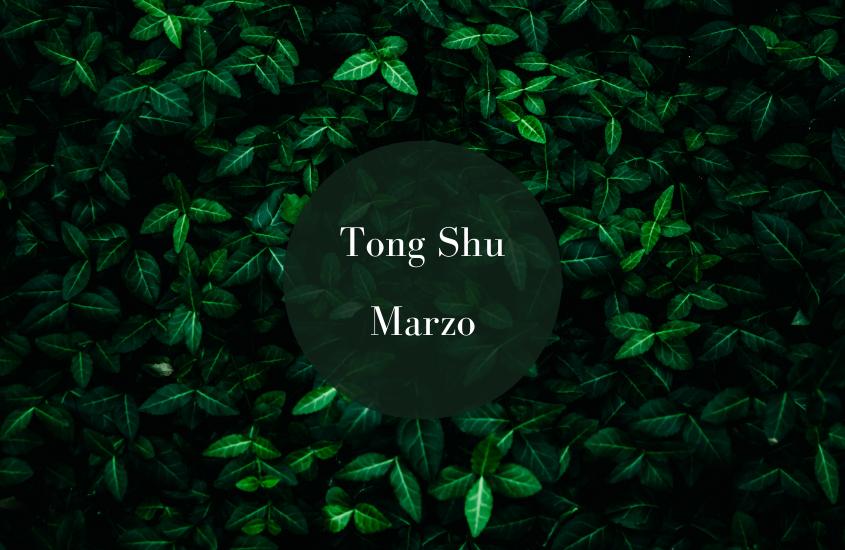 Tong Shu Marzo 2019