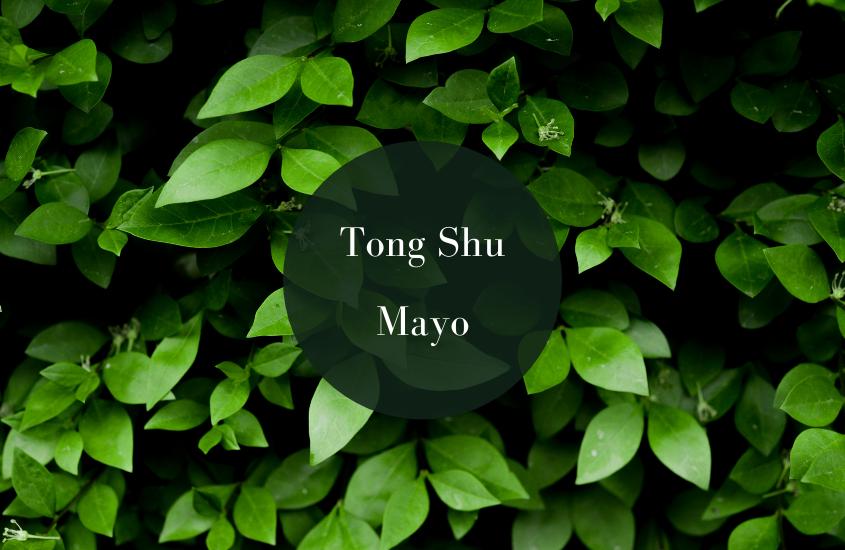 Tong Shu Mayo 2019