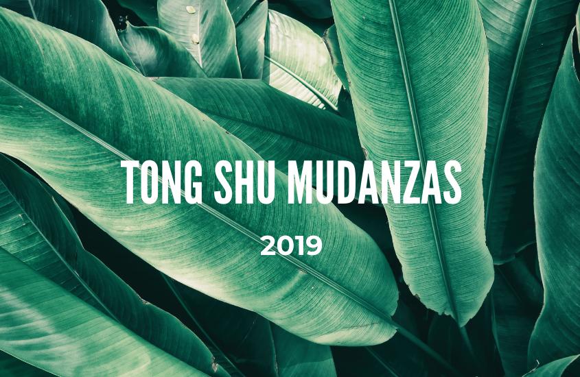 Tong Shu Mudanzas 2019