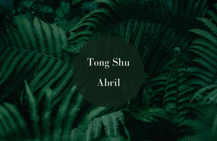 Tong Shu Abril 2018