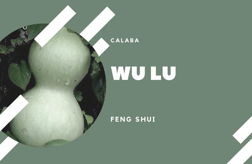 Qué son las Calabazas o Wu Lou