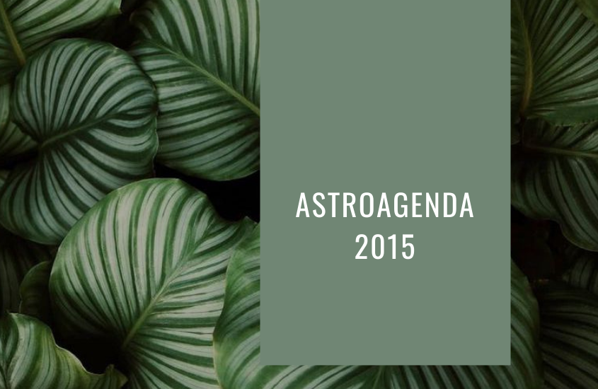 Astro Agenda Personalizada 2015