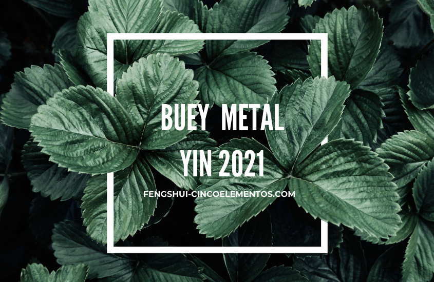 Buey de Metal Yin 2021