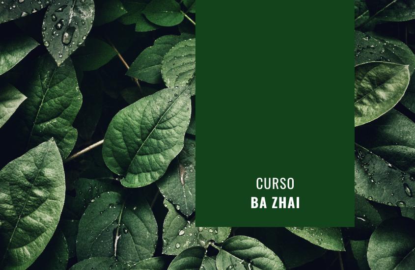 Curso Ba Zhai