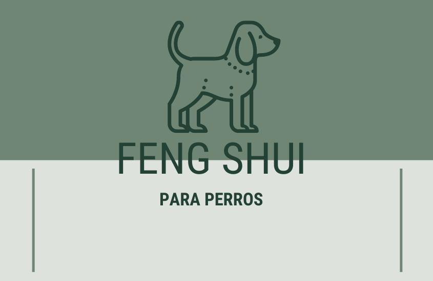 Feng Shui para Perros