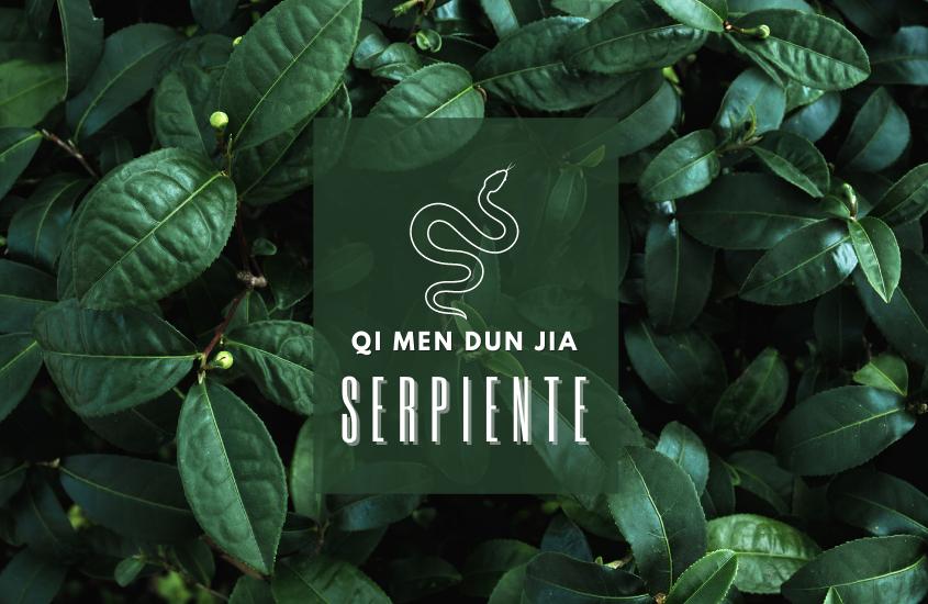 Qi Men Dun Jia: Serpiente