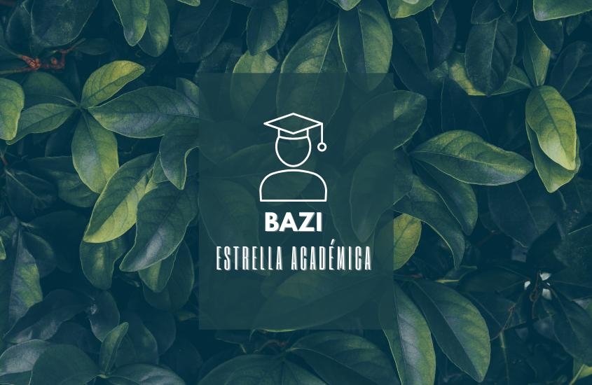 BaZi: Activa tu Estrella Académica