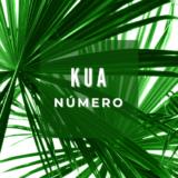 Números Kua de 1900 a 2020