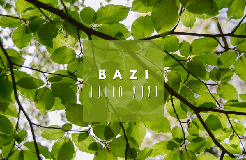 BaZi Julio 2021