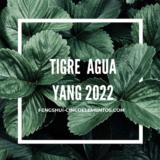 Año Nuevo Chino 2022 Tigre de Agua Yang